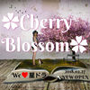 ✿Cherry Blossom✿season2 We星ドラ